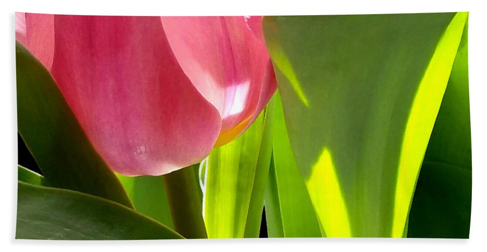 Green Hand Towel featuring the photograph Tulip 2 by Kume Bryant
