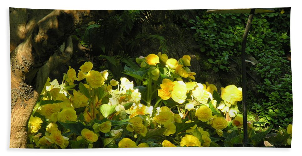 Yello Hand Towel featuring the photograph Untitled by Diane Greco-Lesser