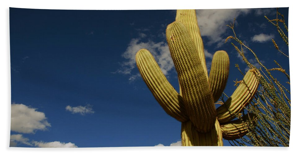 Saguaro Bath Sheet featuring the photograph Up To The Sky by Susanne Van Hulst