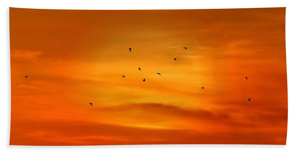 Silhouettes Hand Towel featuring the photograph Upon A Sunset Flight by Angie Tirado