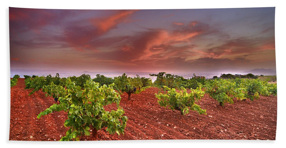 Sunset Hand Towel featuring the photograph Vineyards At Sunset by Guido Montanes Castillo