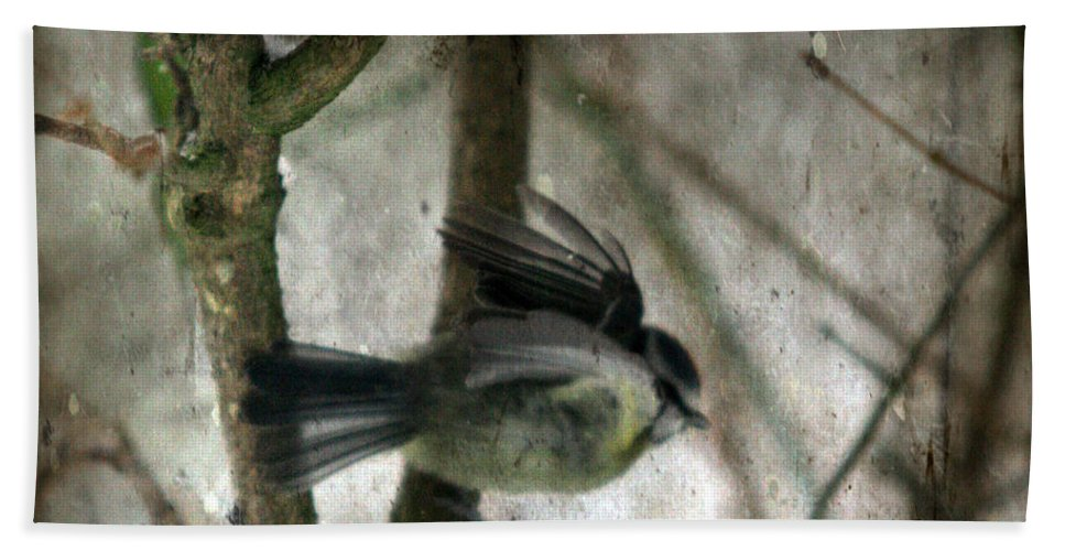Blue Tit Bath Towel featuring the photograph Waiting For Spring by Angel Ciesniarska