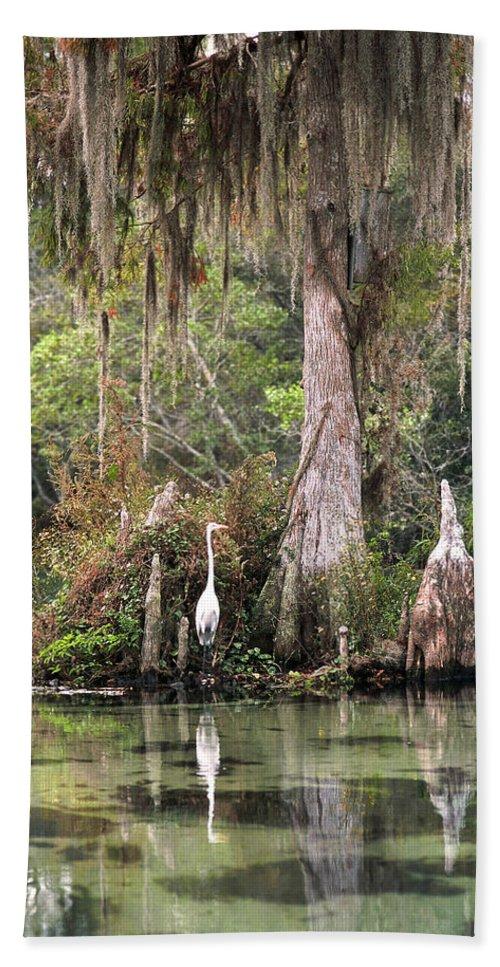 Weeki Wachee Hand Towel featuring the photograph Weeki Wachee River by Steven Sparks