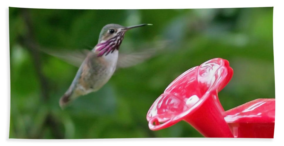 Hummingbird Hand Towel featuring the photograph Welcome To The Garden by Carol Groenen