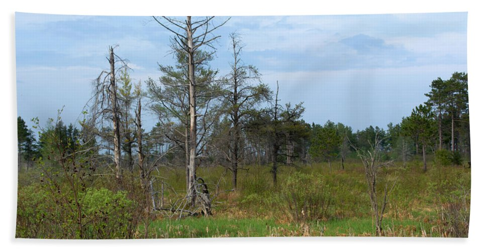 Nature Bath Sheet featuring the photograph Wetland by Linda Kerkau