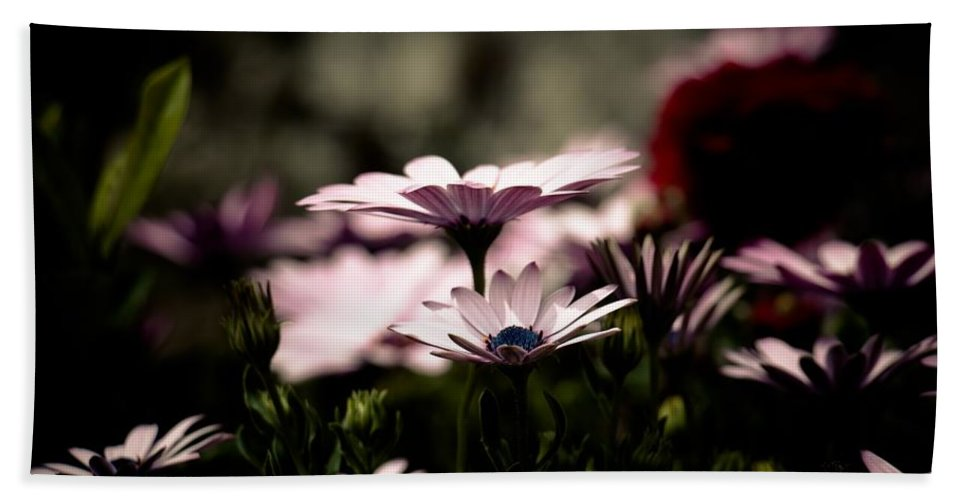 Flower Hand Towel featuring the photograph Wild Flowers by FL collection