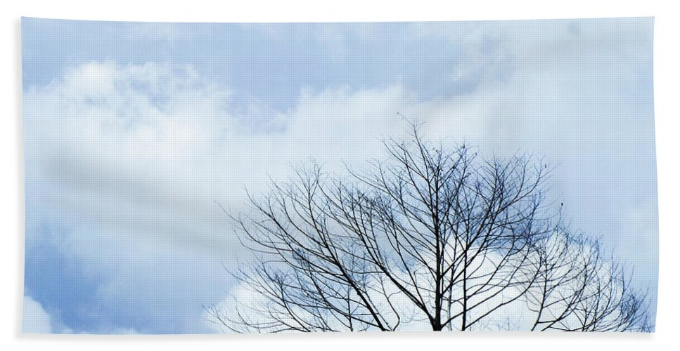 Winter Fall White Sky Bath Towel featuring the photograph Winter Tree by Adelista J