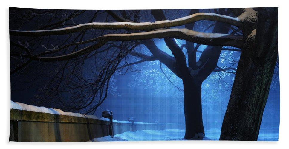 Winter Bath Towel featuring the digital art Winter by Zia Low