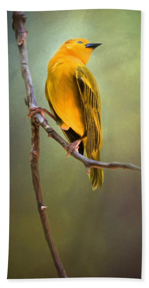 Animals Hand Towel featuring the photograph Yellow Bird by David and Carol Kelly