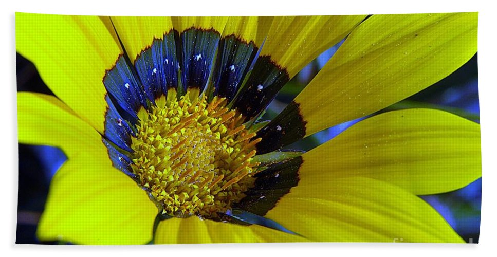 Clay Hand Towel featuring the photograph Yellow Floral by Clayton Bruster