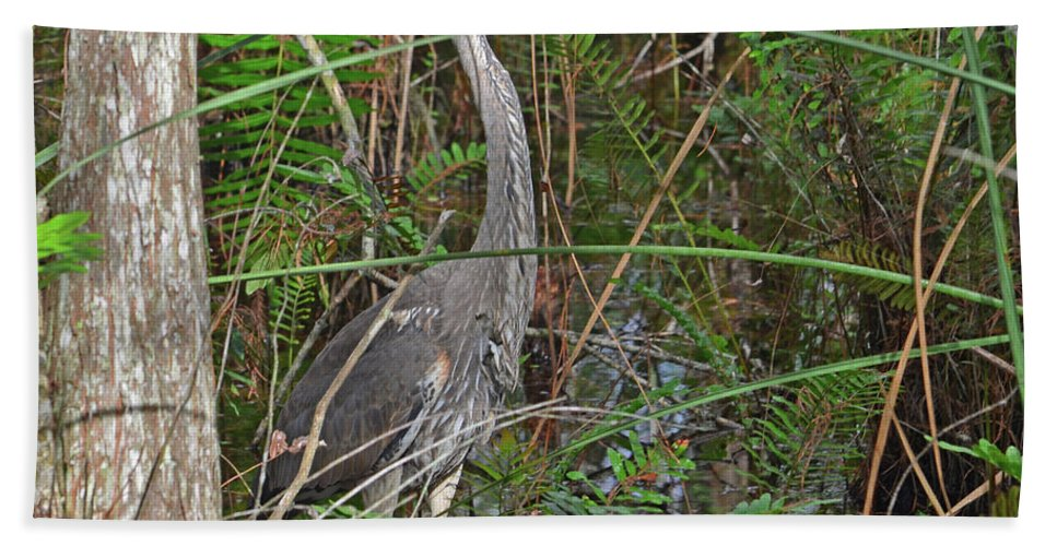 Great Blue Heron Bath Sheet featuring the photograph 100- Great Blue Heron by Joseph Keane