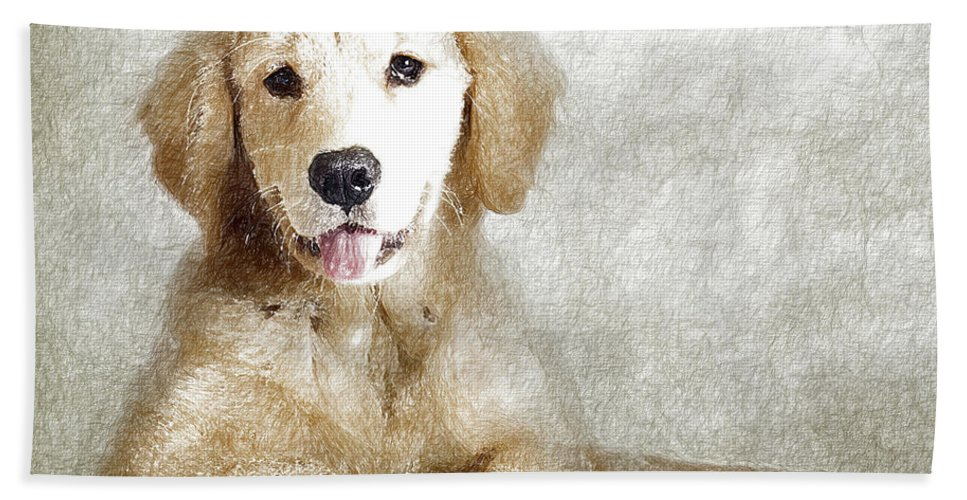 Animal Bath Sheet featuring the digital art Dog by Anna J Davis