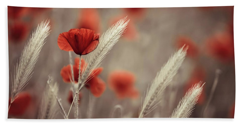 Poppy Hand Towel featuring the photograph Summer Poppy Meadow by Nailia Schwarz