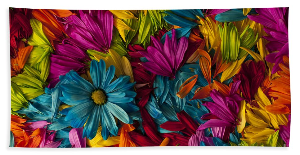 Abstract Bath Sheet featuring the photograph Daisy Petals Abstracts by Jim Corwin