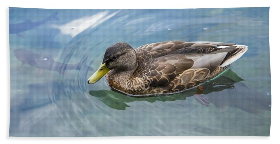 Ducks Hand Towel featuring the photograph Duck by FL collection
