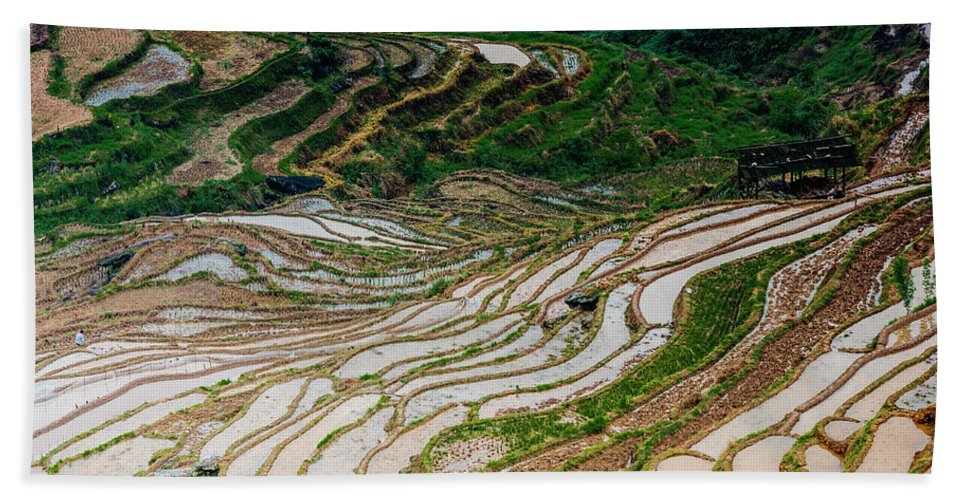Terrace Bath Towel featuring the photograph Longji Terraced Fields Scenery by Carl Ning