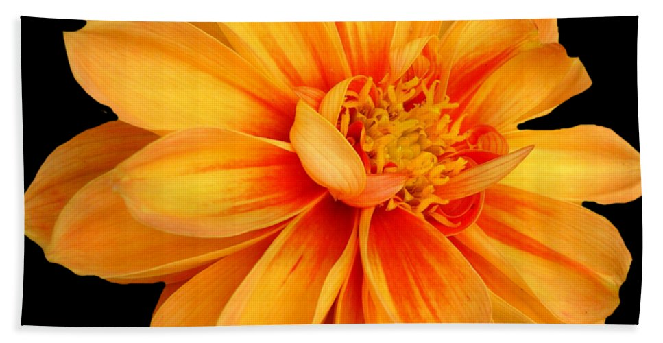 Flower Bath Towel featuring the photograph Flower by FL collection