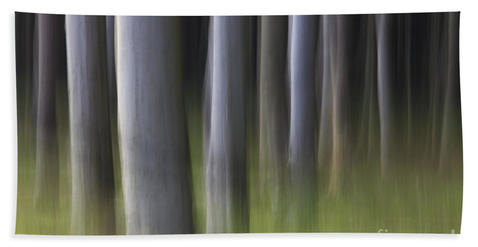 Abstract Bath Sheet featuring the photograph 150403p264 by Arterra Picture Library