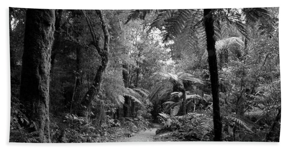 Rain Forest Bath Sheet featuring the photograph Jungle 45 by Les Cunliffe