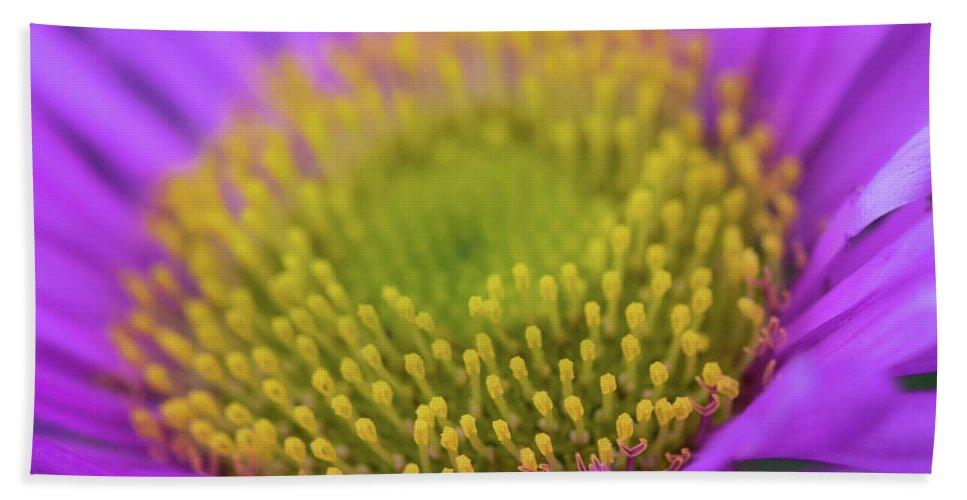 Macro Bath Towel featuring the photograph Closeup Of A Colourful Flower by Wael Alreweie