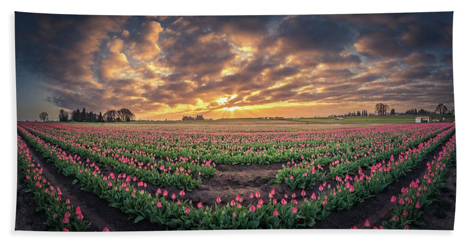 Travel Hand Towel featuring the photograph 180 Degree View Of Sunrise Over Tulip Field by William Freebilly photography