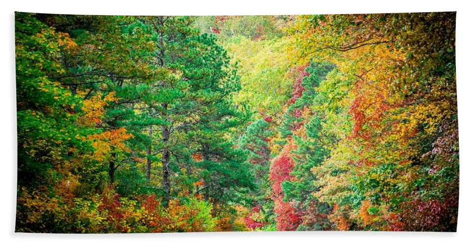 Mountain Bath Sheet featuring the photograph Autumn Season On Blue Ridge Parkway by Alex Grichenko