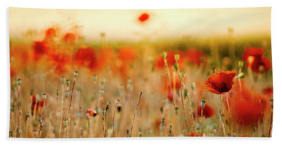 Poppy Bath Towel featuring the photograph Summer Poppy Meadow by Nailia Schwarz