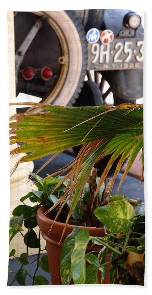 Ford Bath Sheet featuring the photograph 1926 Model T And Plants by Rob Hans