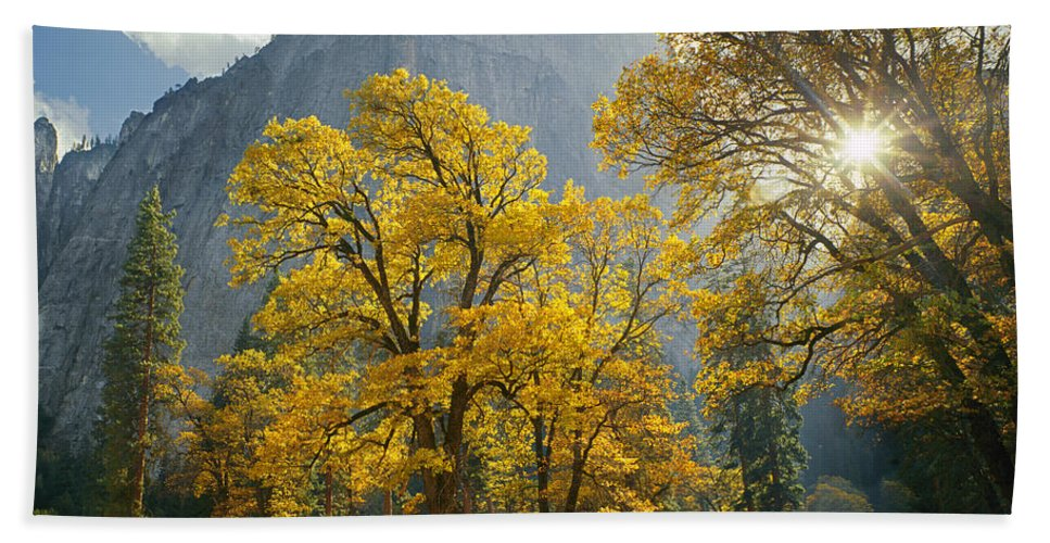 Oak Trees Hand Towel featuring the photograph 1m6611-oak Trees And Middle Cathedral Rock In Autumn by Ed Cooper Photography