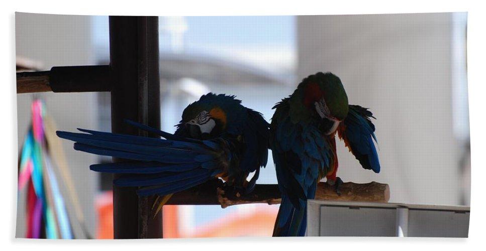 Mac Caw Bath Towel featuring the photograph 2 Birds by Rob Hans