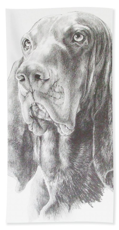 Purebred Dogs Bath Sheet featuring the drawing Black And Tan Coonhound by Barbara Keith