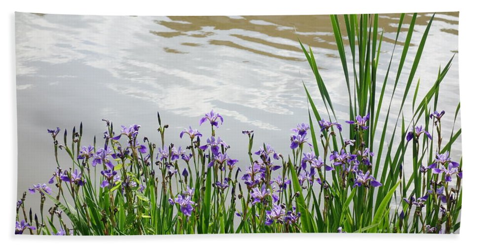 Blue Daffodils Bath Sheet featuring the photograph Blue Daffodils by Anthony Schafer