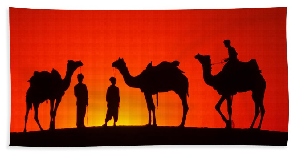 India Bath Towel featuring the photograph Camels At Sunset by Michele Burgess