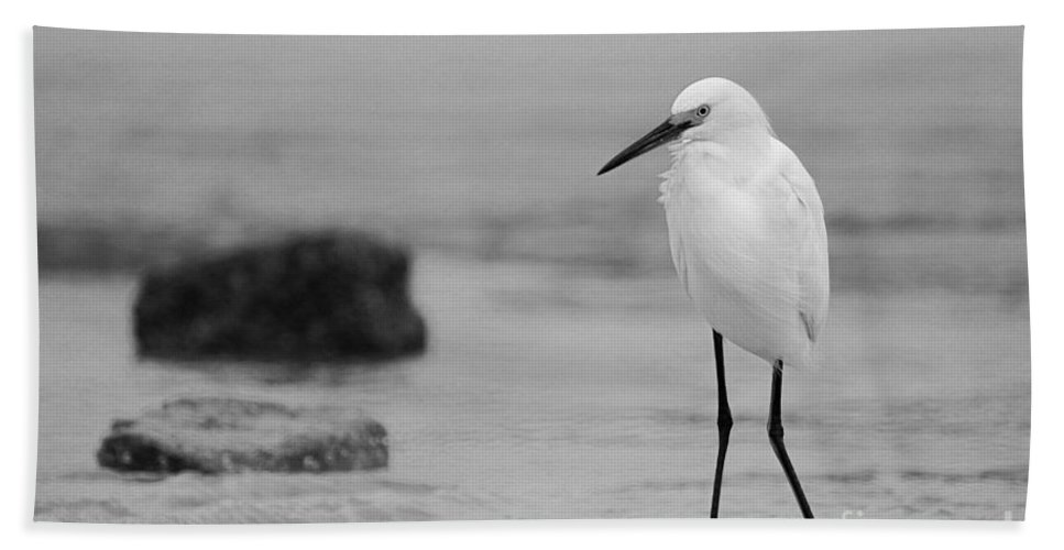 Hand Towel featuring the photograph Egret In Black And White by Angela Rath