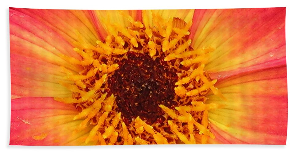 Flower Hand Towel featuring the photograph Flower by Diane Greco-Lesser