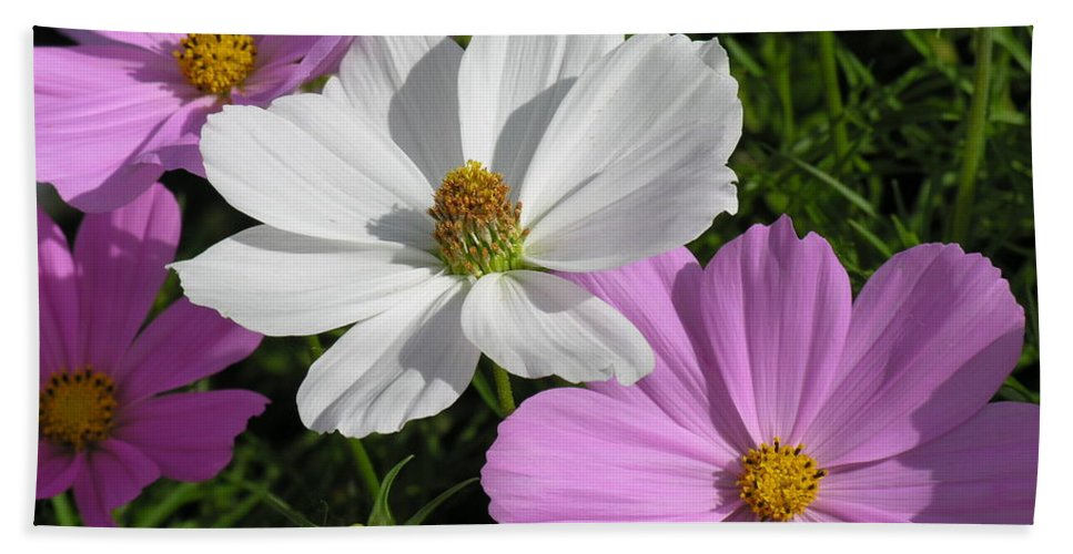 White Bath Towel featuring the photograph Flowers by Diane Greco-Lesser