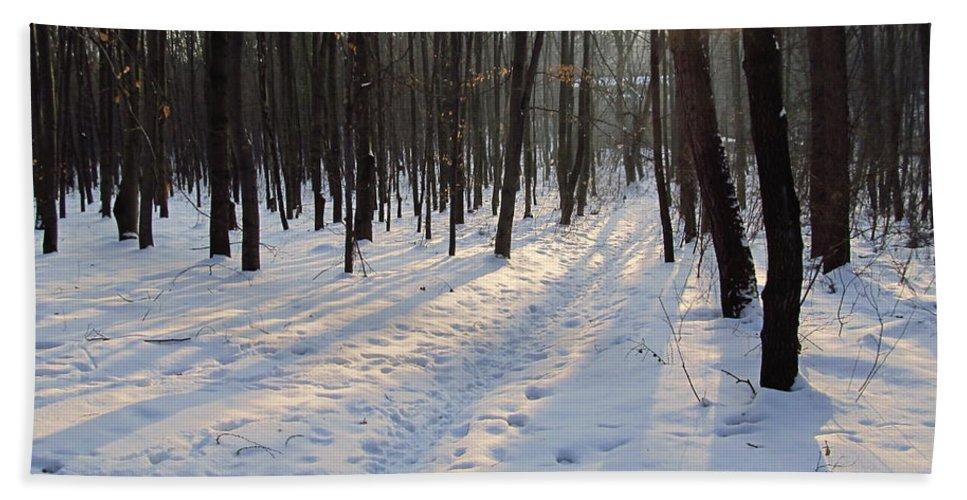 Colour Hand Towel featuring the photograph Forest by Wojtek Kowalski