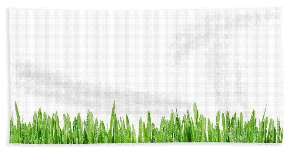 Grass Bath Sheet featuring the photograph Green Grass by Tilen Hrovatic