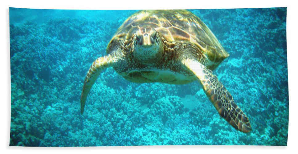 Sea Turtle Bath Sheet featuring the photograph Here's Looking At You by Angie Hamlin