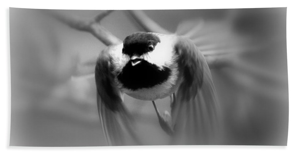 Carolina Chickadee Bath Sheet featuring the photograph Img_0001 - Carolina Chickadee by Travis Truelove