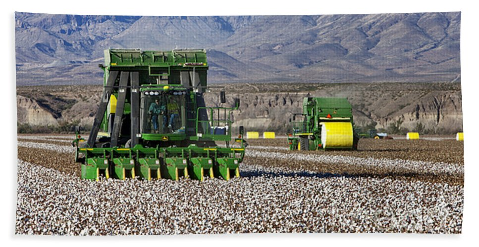 Cotton Picker Hand Towel featuring the photograph John Deere Cotton Pickers Harvesting by Inga Spence