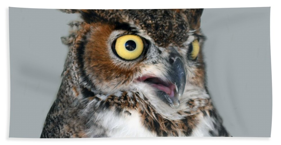 Long-eared Bath Sheet featuring the photograph Great Horned Owl by Philip Ralley