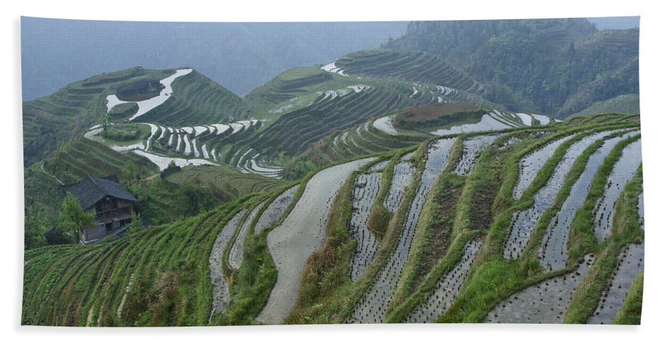 Asia Bath Towel featuring the photograph Longsheng Rice Terraces by Michele Burgess