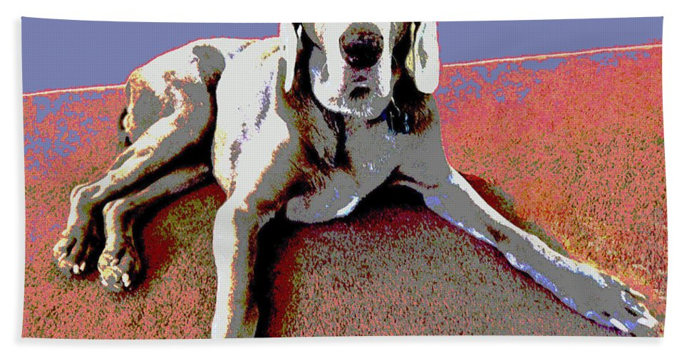 Dog Hand Towel featuring the photograph Martina by Julie Niemela