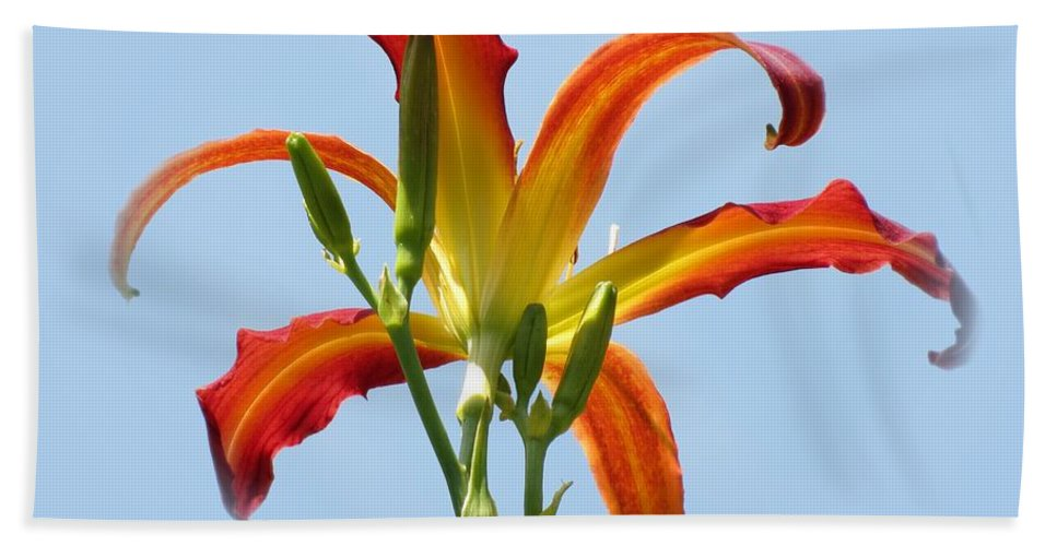 Red Ribbons Daylily Bath Sheet featuring the photograph Up In The Air by MTBobbins Photography