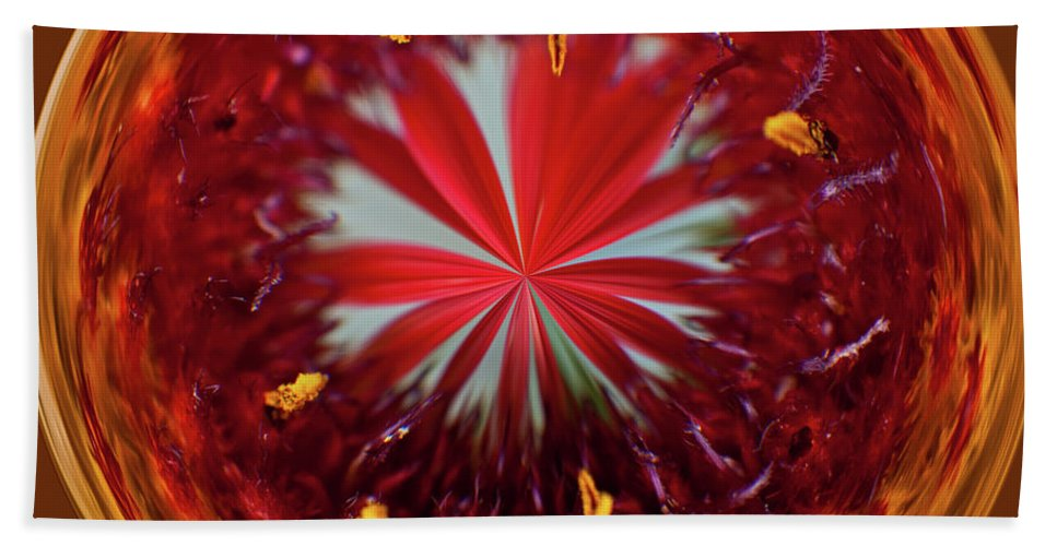 Flowers Hand Towel featuring the photograph Orb Image Of A Gaillardia by Brenda Jacobs