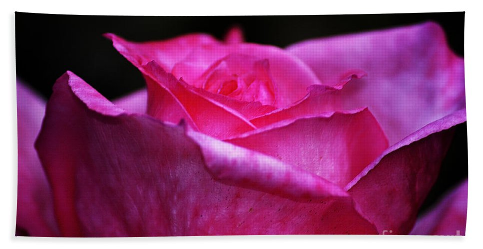 Clay Bath Towel featuring the photograph Pink Rose by Clayton Bruster