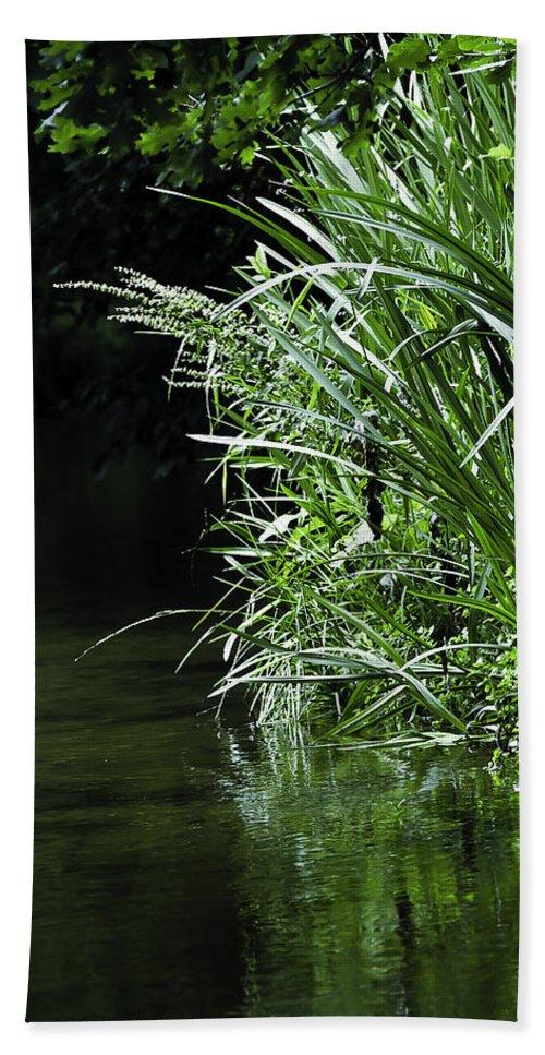 Birch Tree Bath Sheet featuring the photograph Pond by Svetlana Sewell