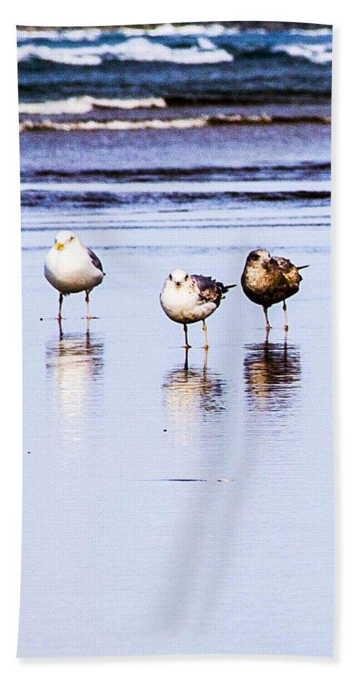 Hand Towel featuring the photograph Sea Birds by Angus Hooper Iii