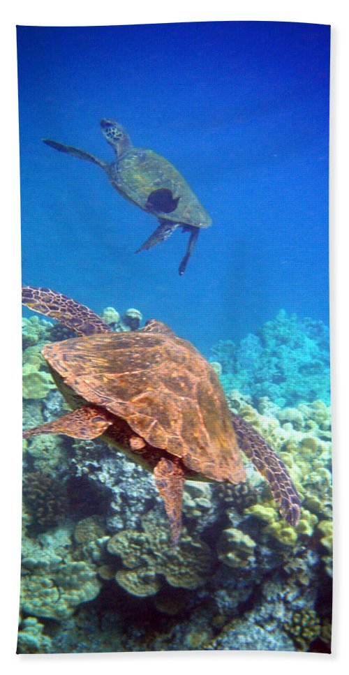 Sea Turtles Bath Sheet featuring the photograph Tag You're It by Angie Hamlin